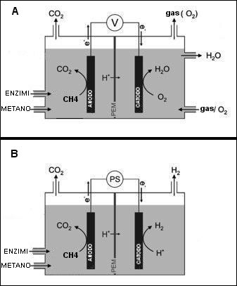 MICROBIAL ELECTROLYSIS CELL4.jpeg